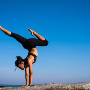 wellness - fitness